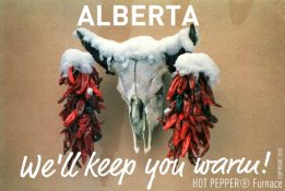 We will keep you warm!